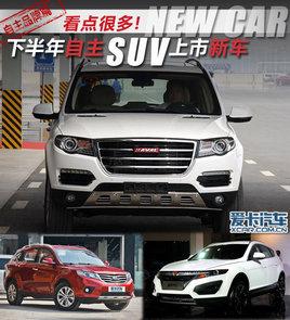 看点很多! 下半年将上市的10款自主SUV